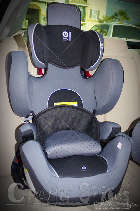The Kiddy World Plus Car Seat