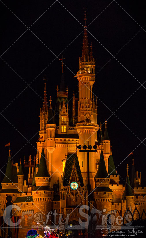 Walt Disney World, Cinderella Castle in Orange