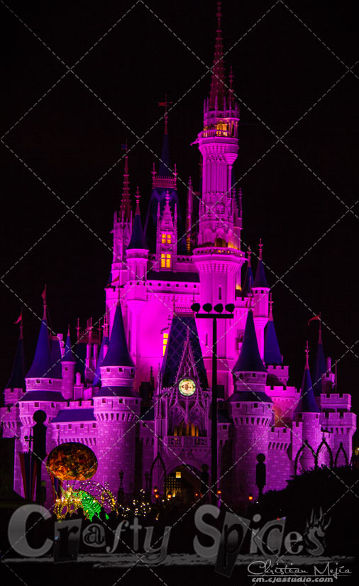 Walt Disney World, Cinderella Castle in Pink