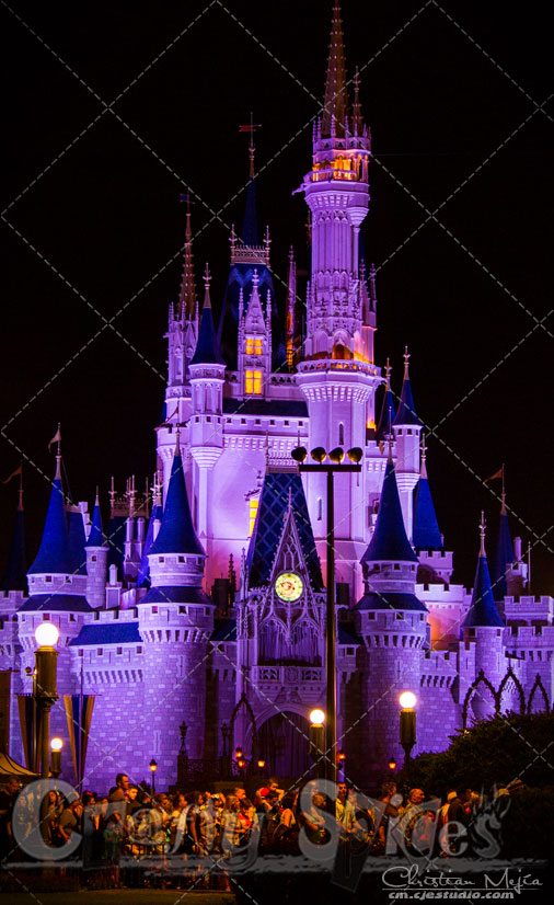 Walt Disney World, Cinderella Castle in Purple