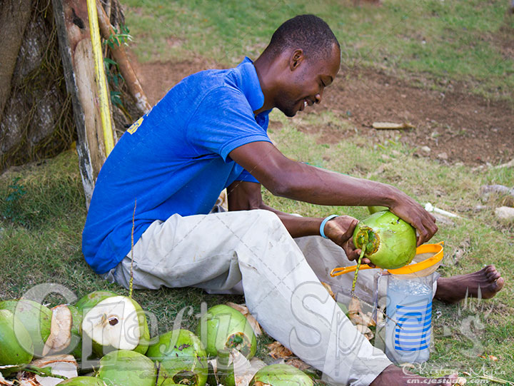A friend helping us get Coconut water and meat