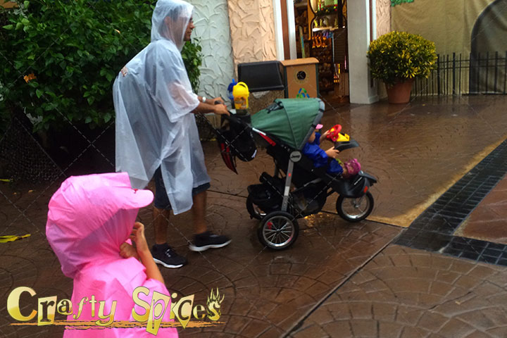 Rainy Day at Busch Gardens Tampa - We got Wet!